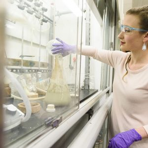 Student works in chemical engineering lab by reaching into a work area behind glass doors