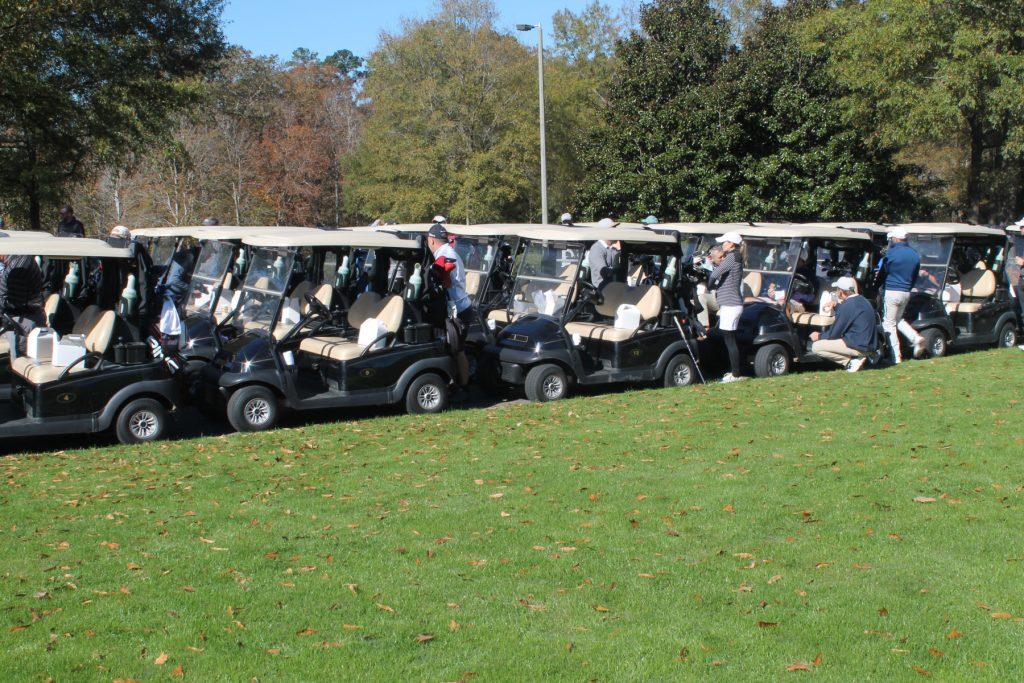large row of many golf carts