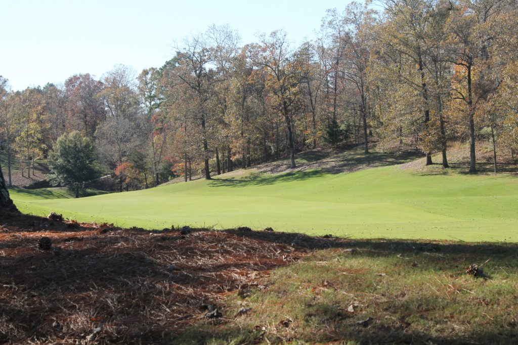 hot of the green with trees to the right and back