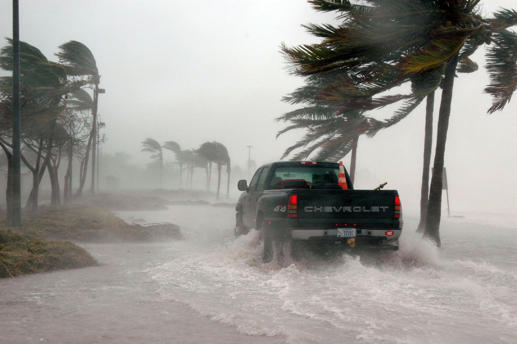 A storm blowing palm trees and a car goes through harsh rain and floods