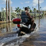 Man on a motorcycle going down a flooded street with palm trees lining the way